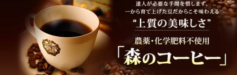 【森のコーヒー】おすすめポイント・口コミ・レビューまとめ